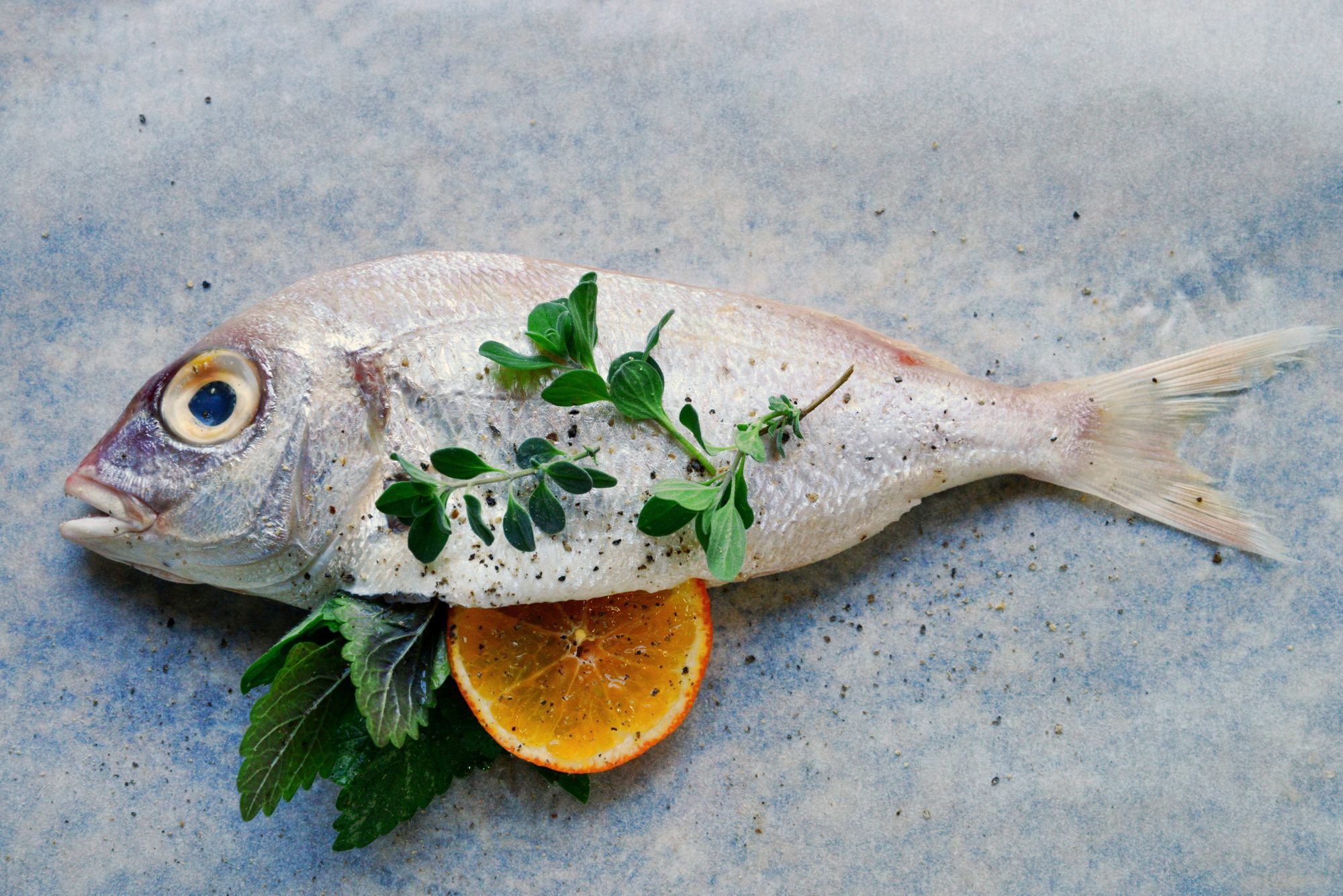 omega-3-diy-test-fish