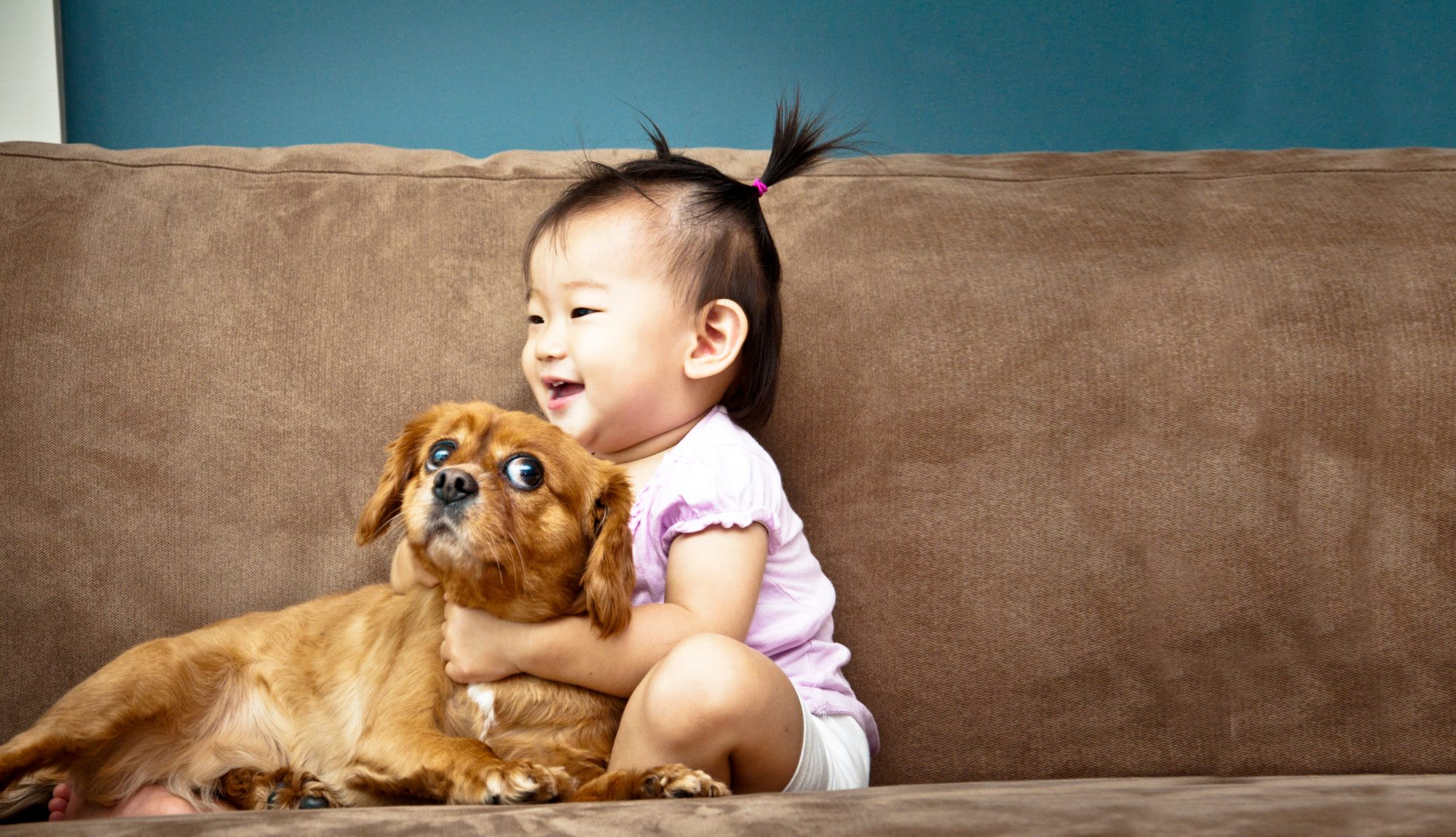 baby-dog-allergies-pets