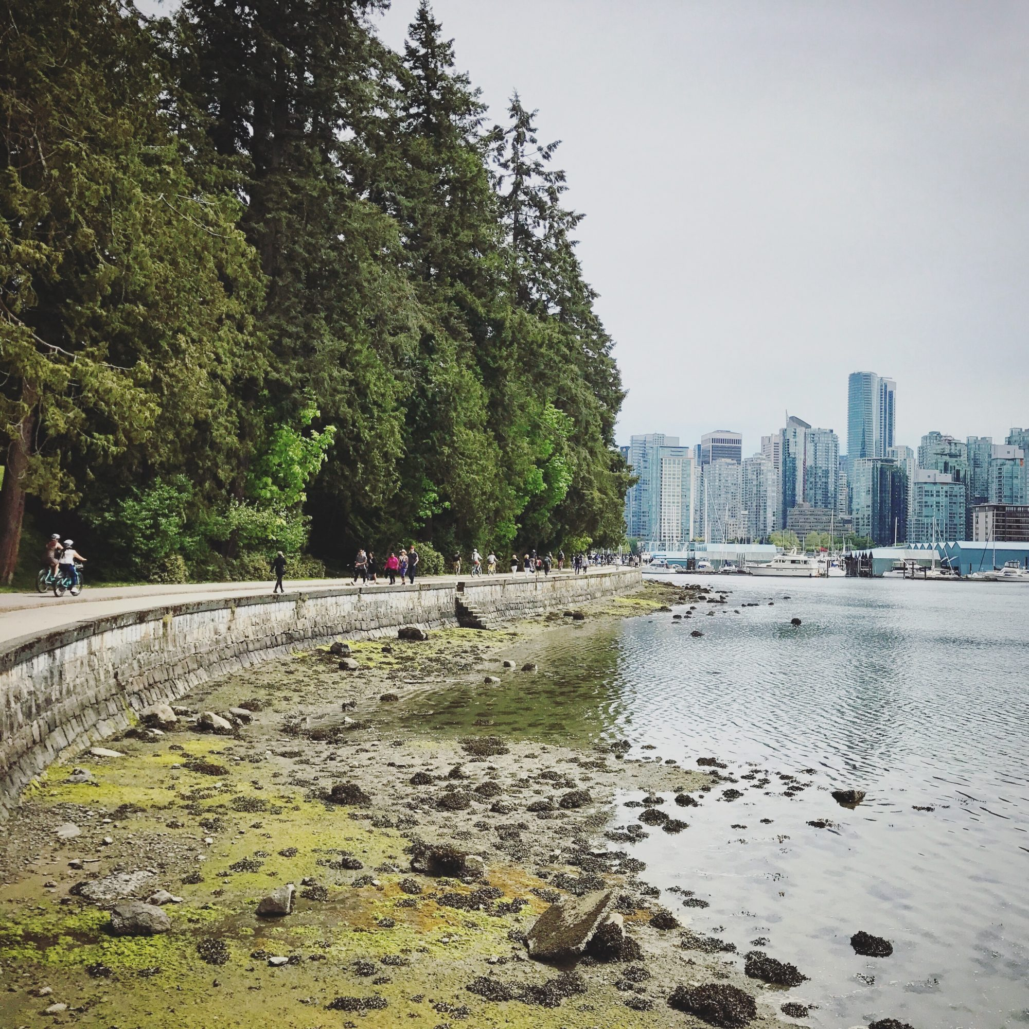 vancouver-stanley-park