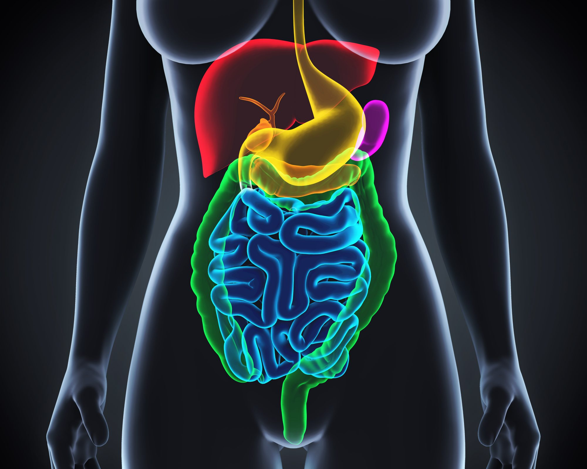 gastroparesis-intestines-stomach-nauseous