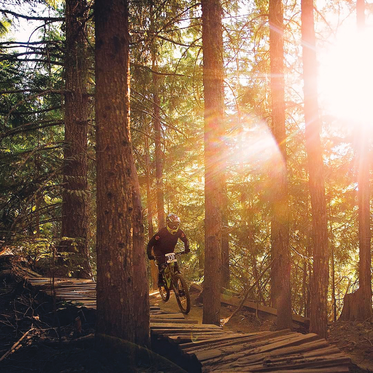 Best routes for mountain biking