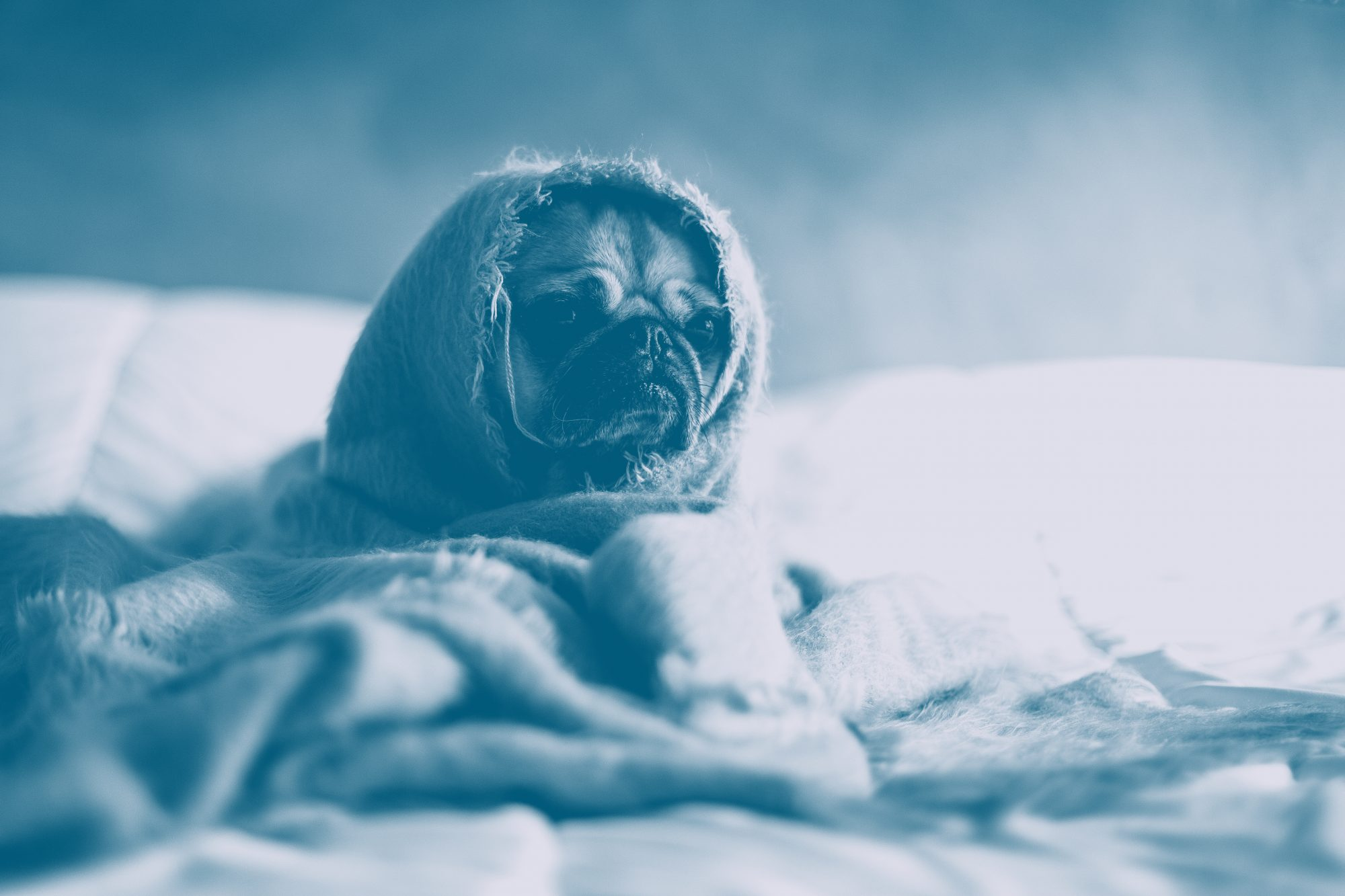The Most Miserable Day of the Year Is Upon Us—Here's How to Survive It