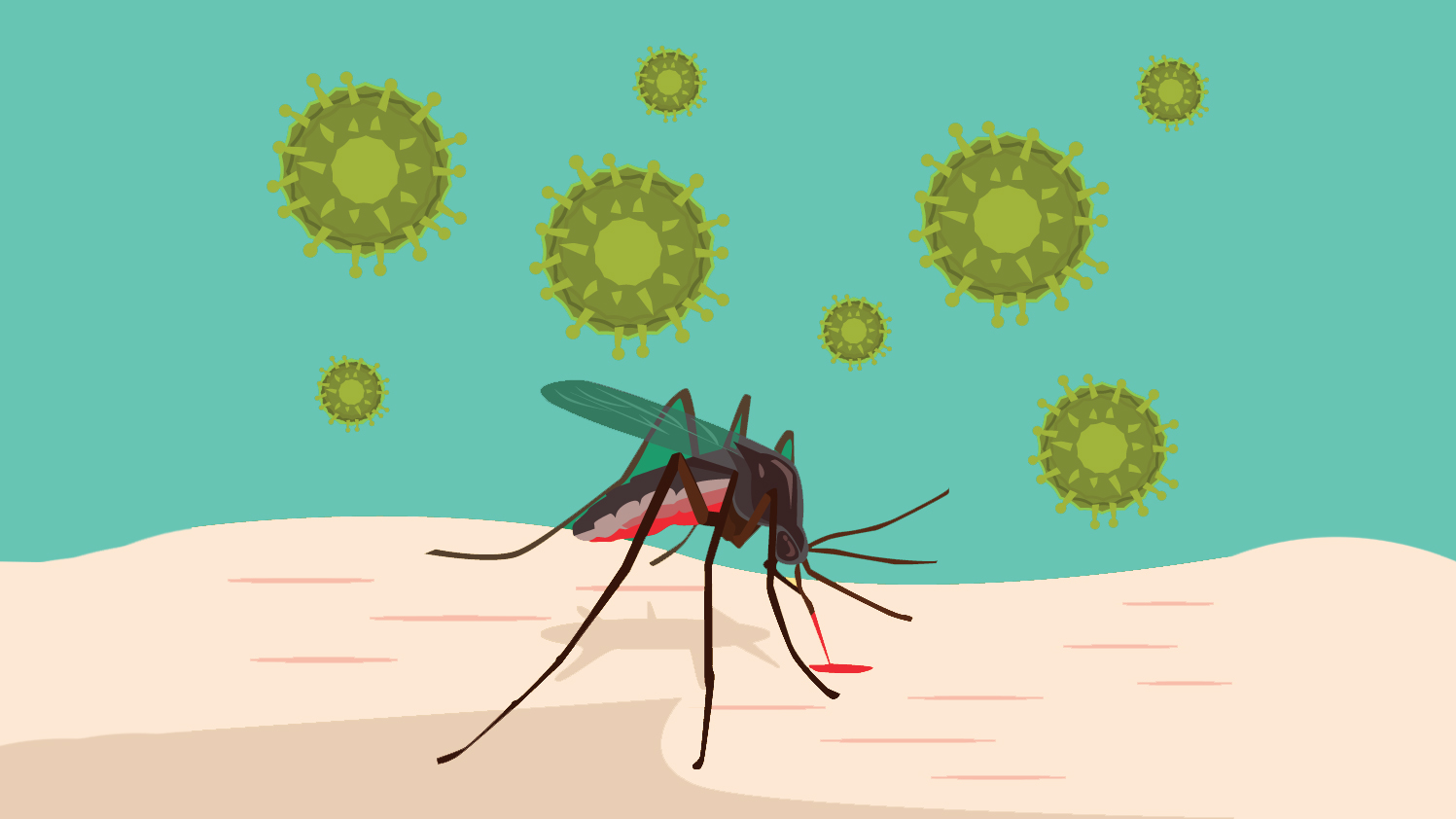 malaria-mosquito-virus malaria mosquito-virus mosquito virus bite itch symptoms death woman health contagious water summer skin exposed