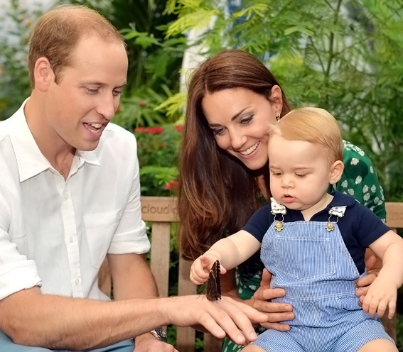 Prince George Touches a Butterfly