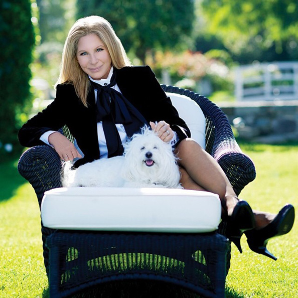 Barbra Streisand Officially Joins Instagram! What's Her First Post?