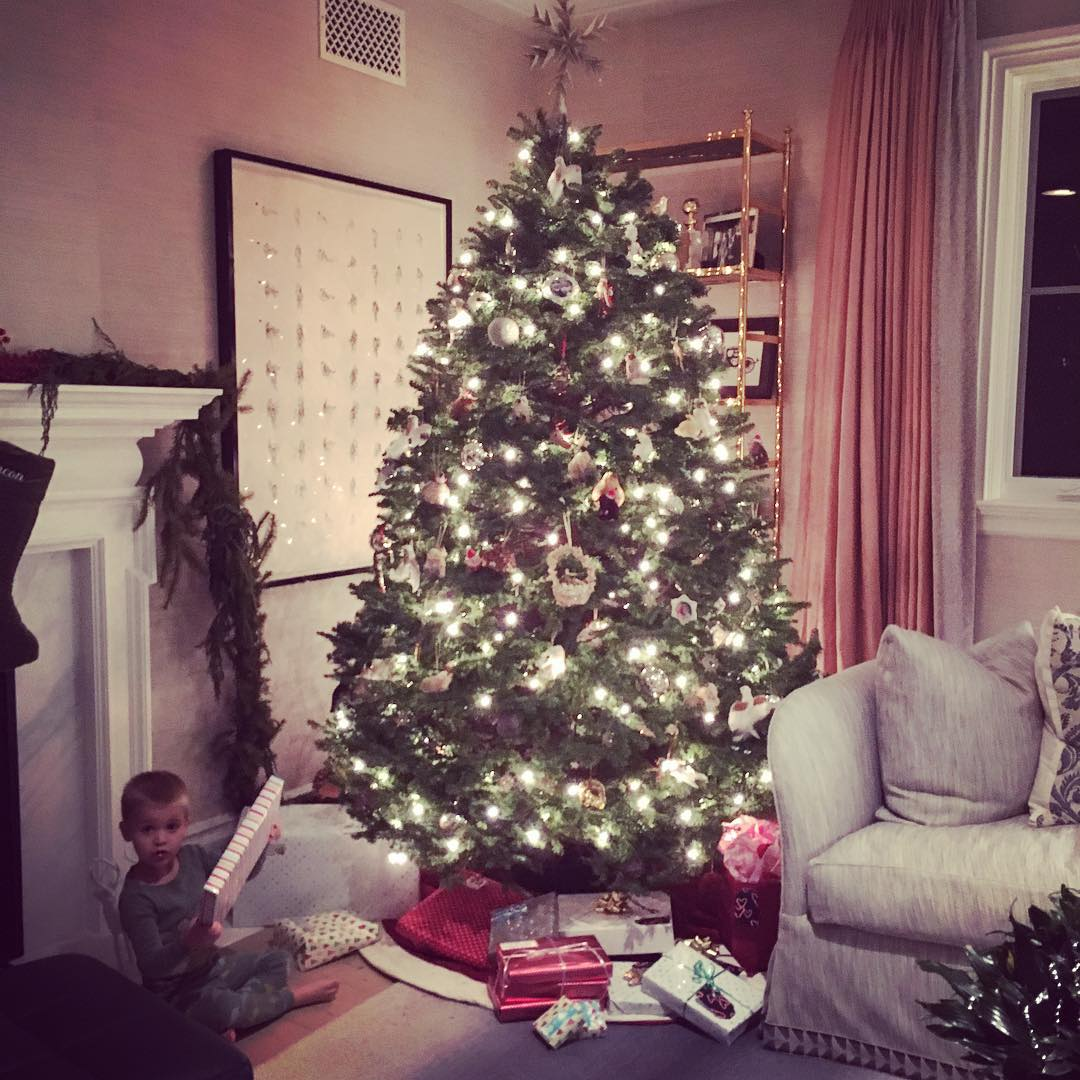 See the Best Celebrity Christmas Trees of 2015