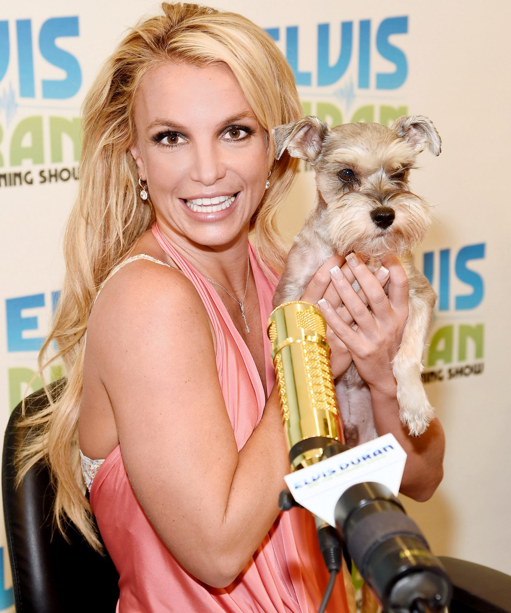 Britney Spears Cuddles with aSchnauzer in Honor of National Dog Day!