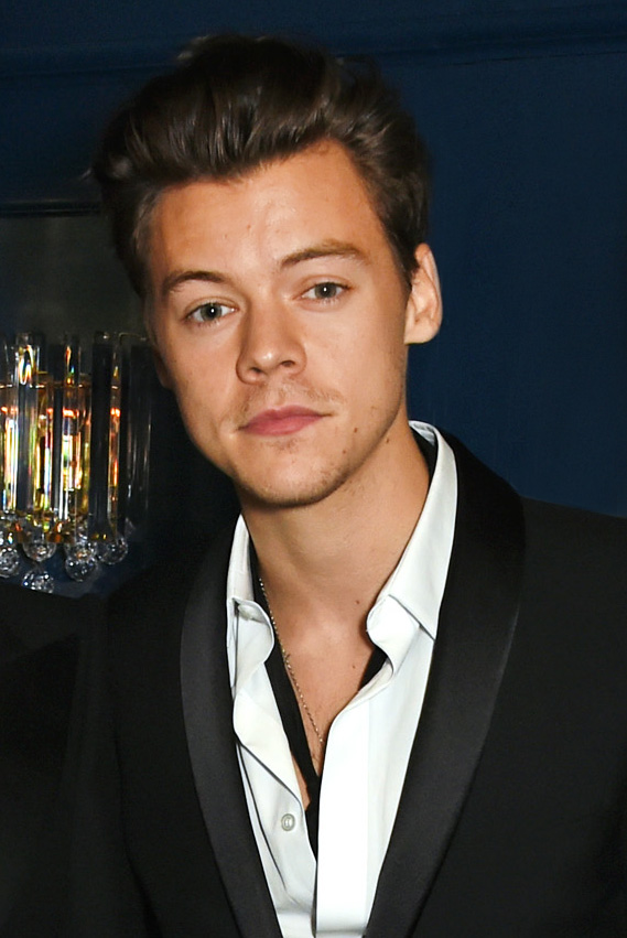 You Won't Believe What Harry Styles Wore Next