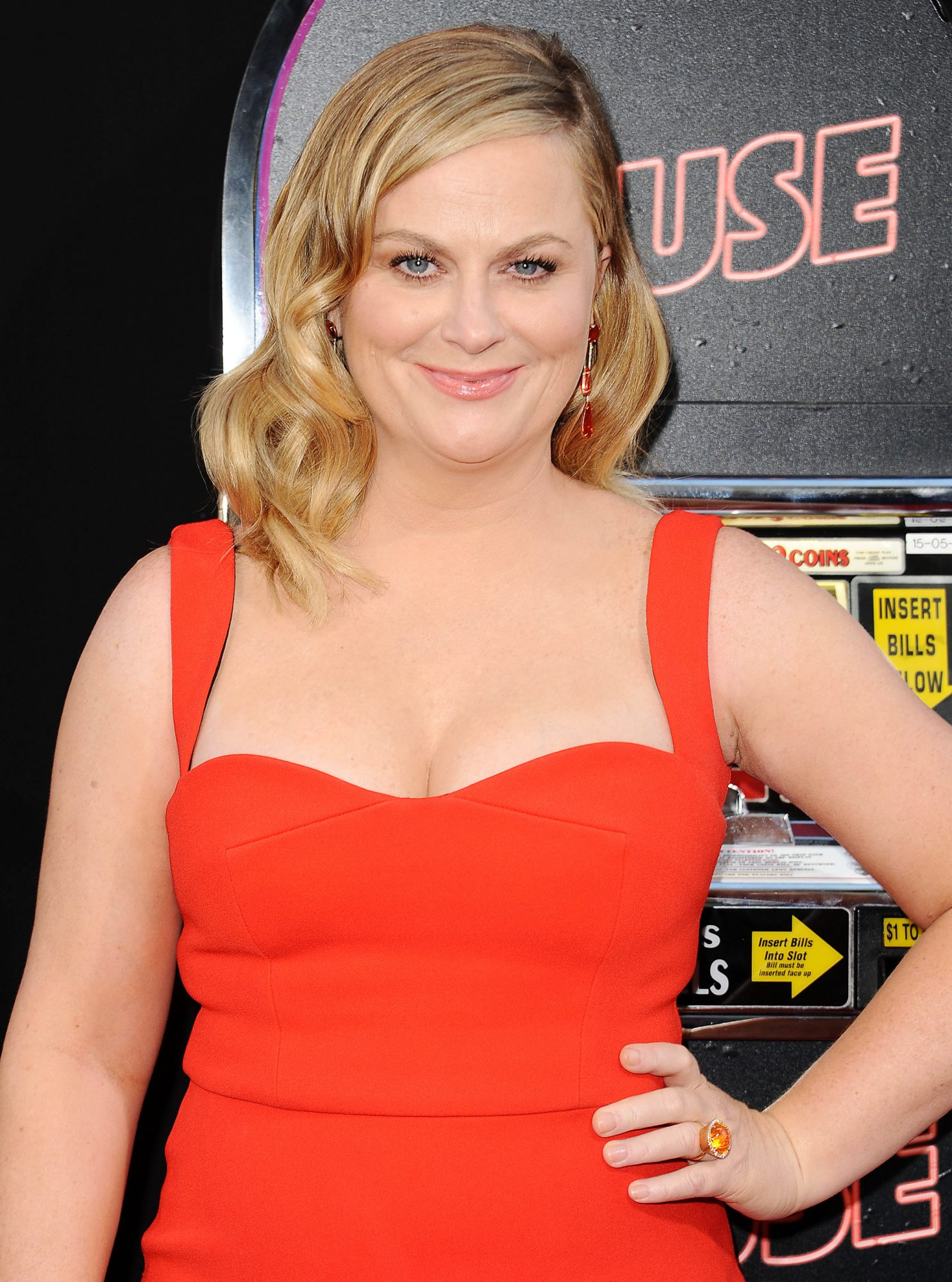 Amy Poehler's New Network TV Gig Sounds Hilarious