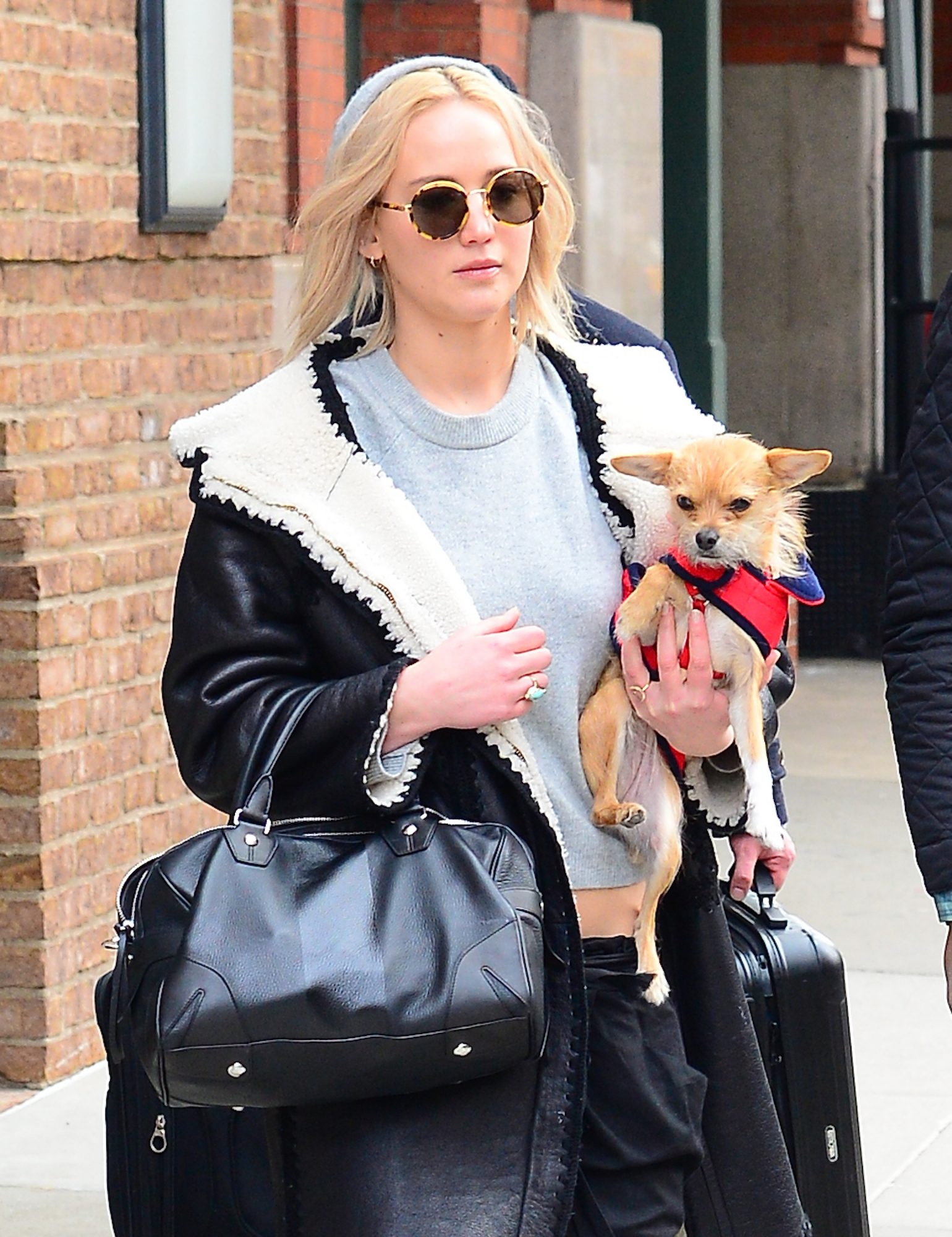 Jennifer Lawrence Vanity Fair Dog