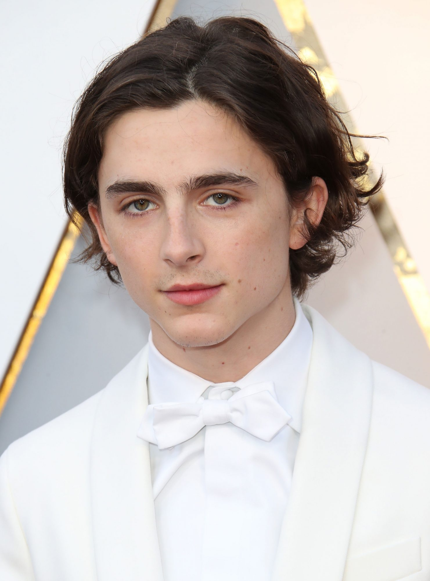 Timothe Chalamet Cut Off All Of His Hair Into A Bowl Cut Instyle