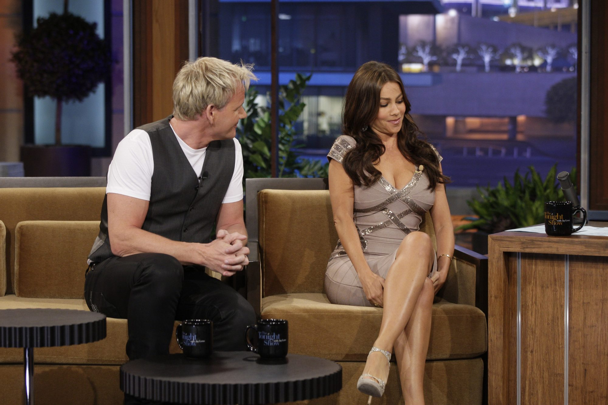 Gordon Ramsay Takes Some Heat Over Resurfaced Interview With Sofia Vergara