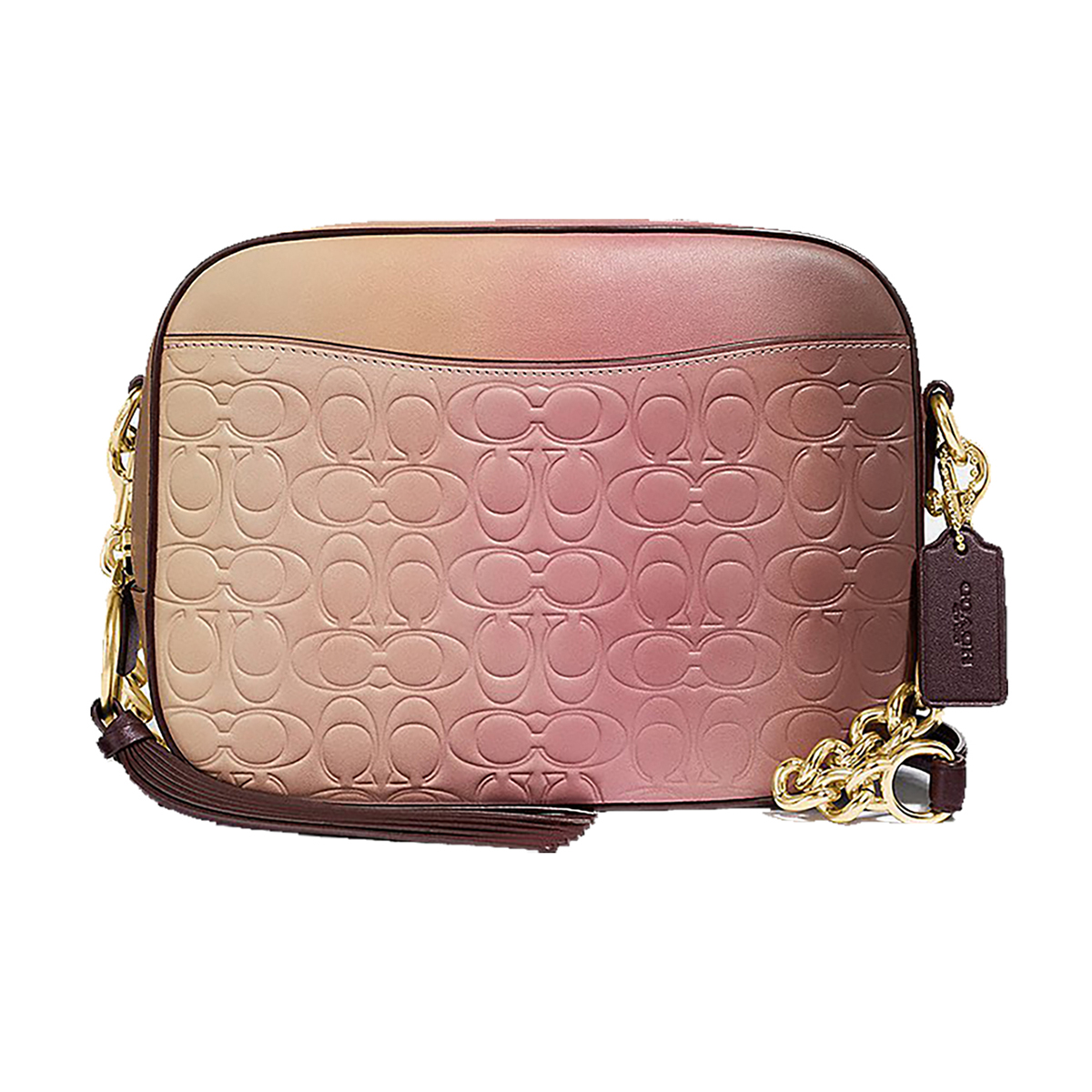 coach-ombre-camera-bag