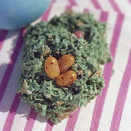 Robin's Egg Nests