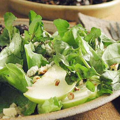 Watercress-Bibb Salad with Apples and Blue Cheese