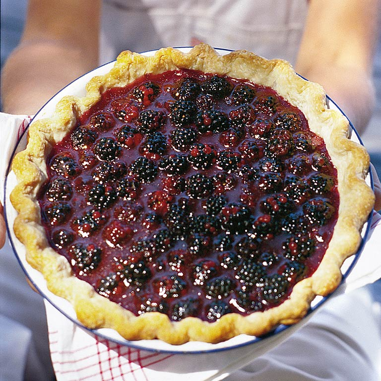 Fresh Blackberry Pie Recipe | MyRecipes