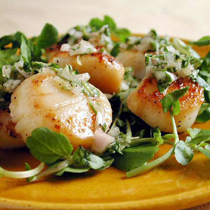 Seared Scallops with Parsley-Thyme Relish Recipe