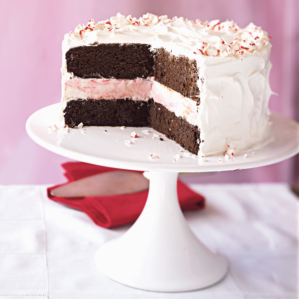 Mint chocolate chip ice cream cake southern living
