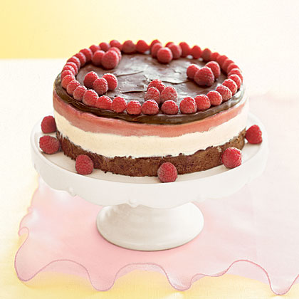 Frozen Chocolate Raspberry Torte