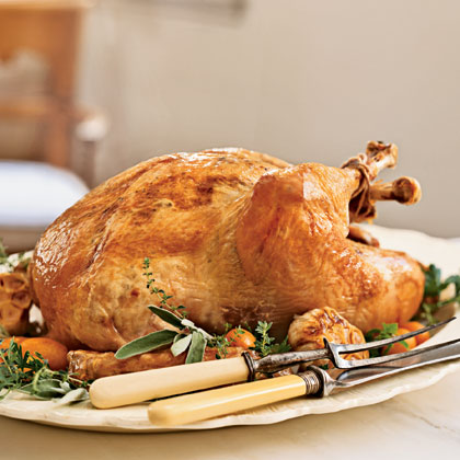 Holiday How-To #3: Carving a Turkey