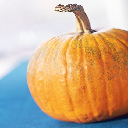 What type of pumpkins can I use for cooking?