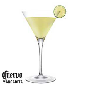 Jose Cuervo Platino Martini Drink RecipeRecipe