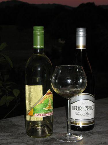 Winter Whites: Sauvignon Blanc