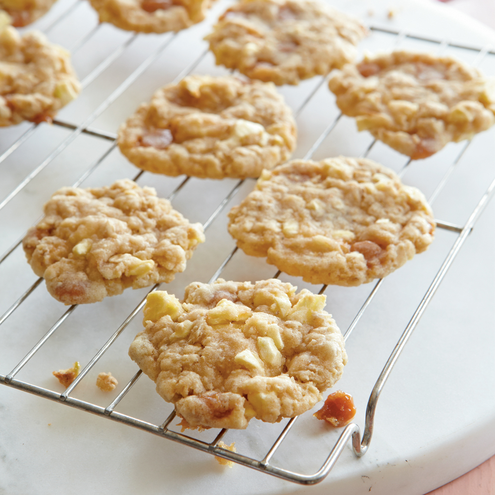 Easy low cal oatmeal cookie recipe