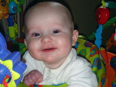 The Great Baby Food Debate