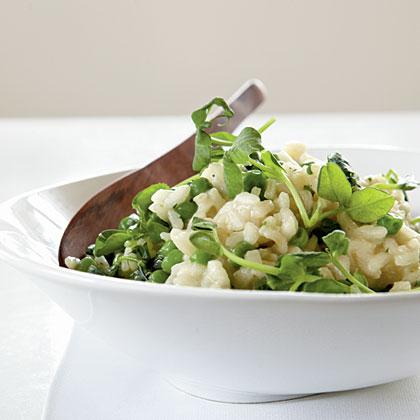 English Pea Risotto Recipe