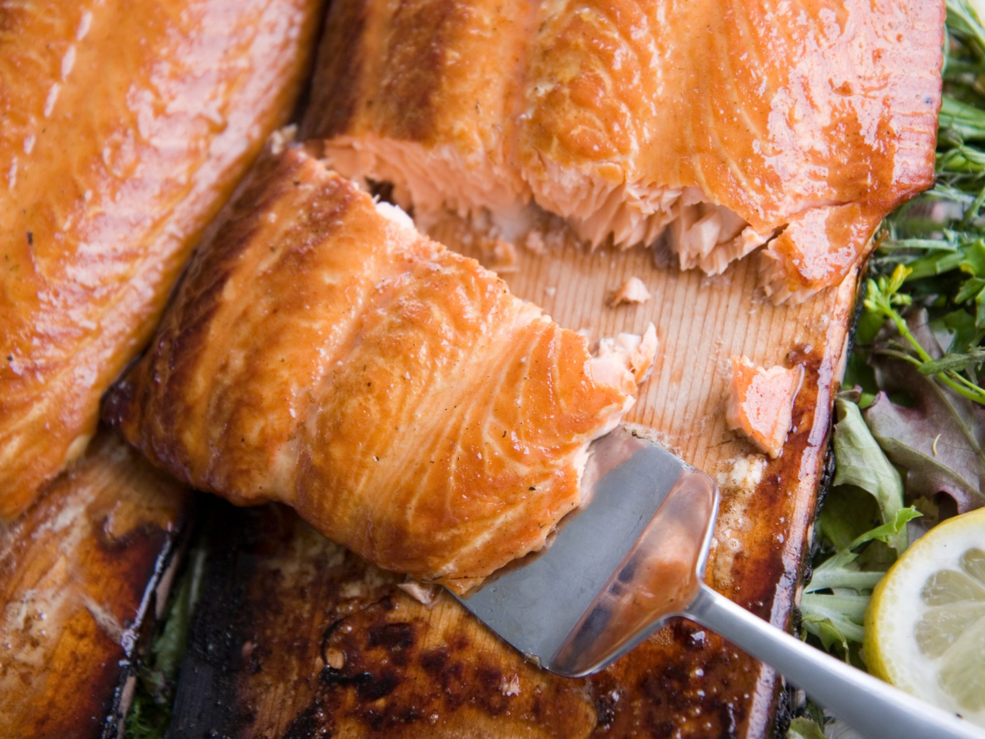 Planked Atlantic Salmon