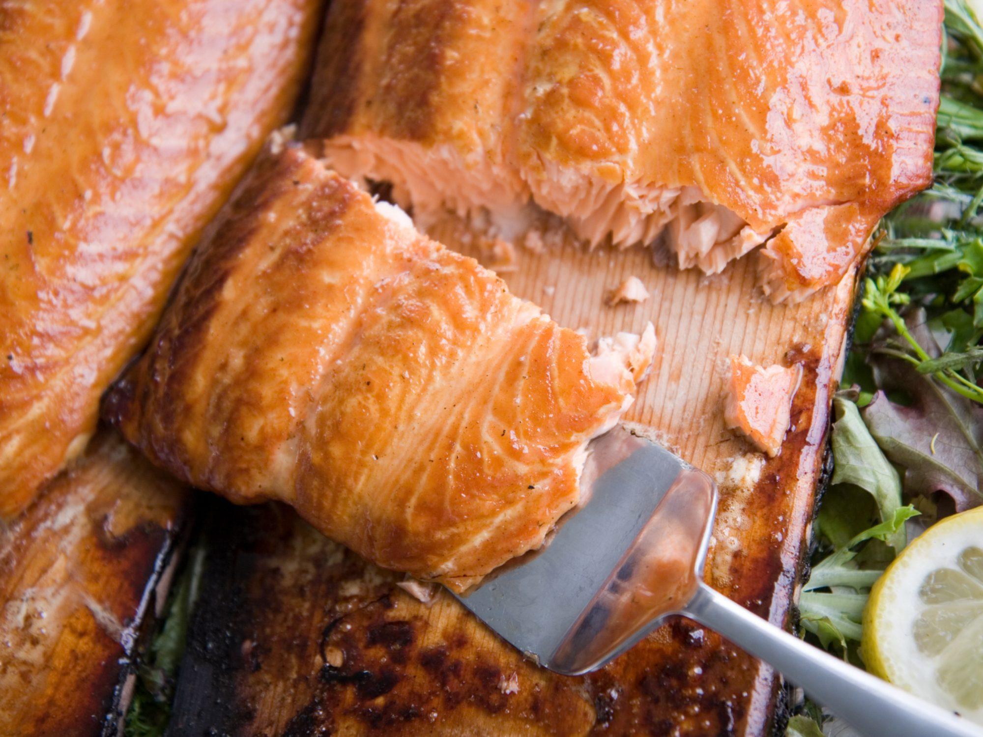 Planked Atlantic Salmon