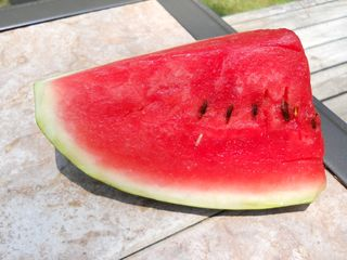 Watermelon Memories