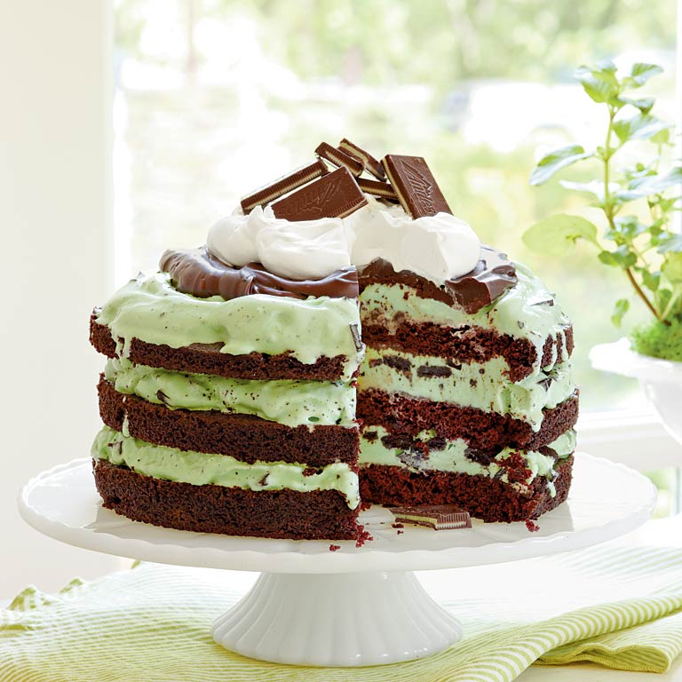 Mint Chocolate Chip Ice-Cream Cake Recipe | MyRecipes