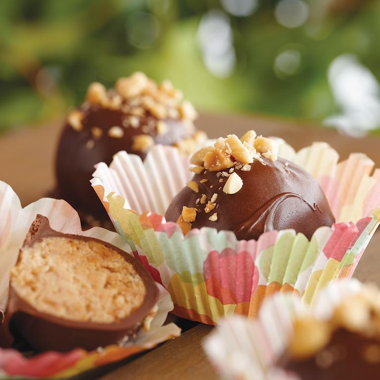 Peanut Butter Chocolate Cake Bites Recipe