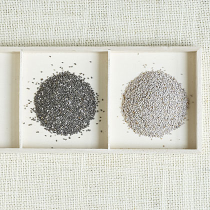 Can you eat chia seeds?
