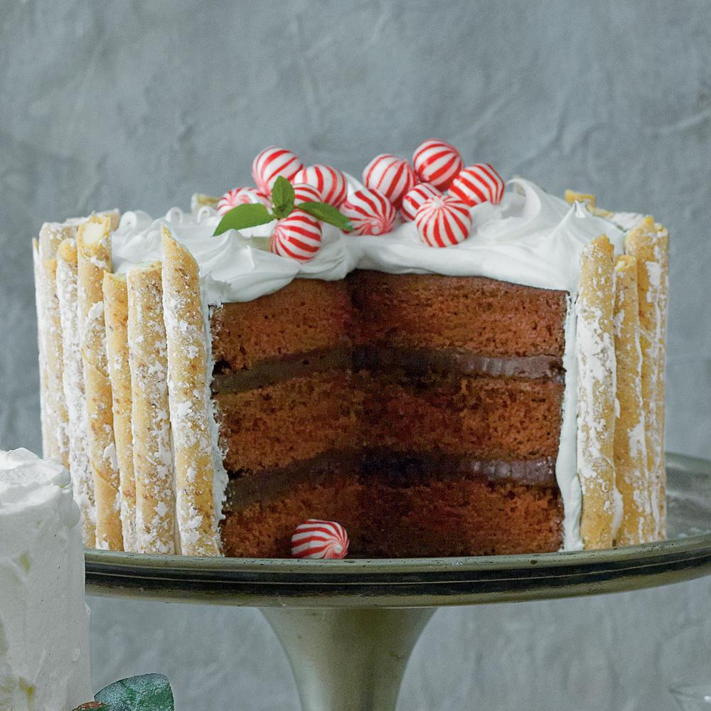 Peppermint-Hot Chocolate Cake Recipe
