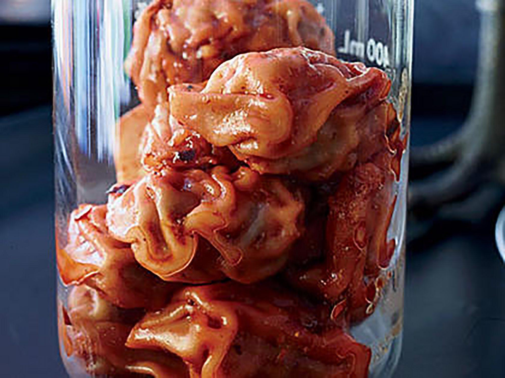 Pork Dumplings with Chile-Sesame Sauce