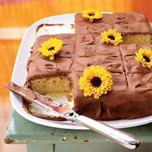 Cake of the Week: Yellow Cake with Chocolate Icing