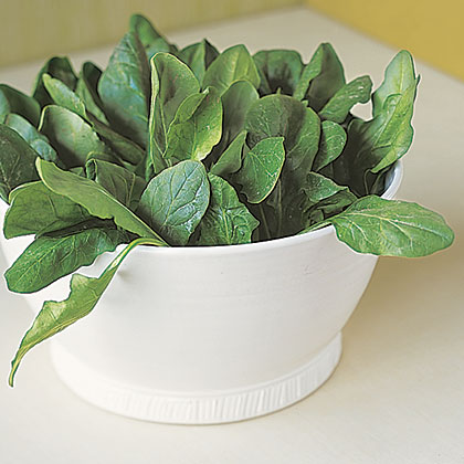 Every chef knows spinach is a delight to cook with. But, they don't know that gardeners don't have to do too much to get this leafy green to sprout. As soon as the soil loosens in late winter, plant spinach and it will be ready in 6 weeks. Pinch off leaves daily, or as needed, to keep the plant productive through the season.Try making a spinach salad with raw, garden-fresh leaves, bacon, red onions, and a vinaigrette or sauté in a pan with seasoning.