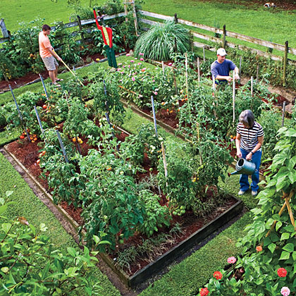 Happy, Healthy Gardening