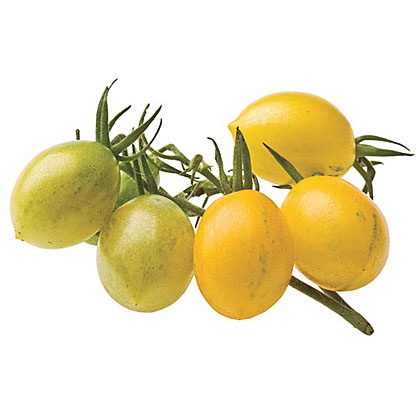 'Yellow Grape'