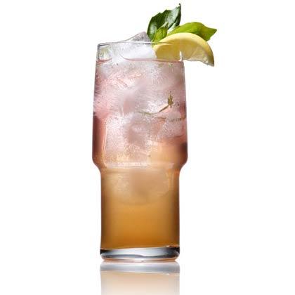<p>Sparkling Basil Refresher</p>