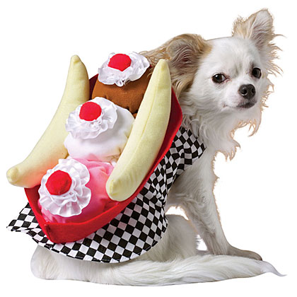 You may already think your dog is sweet, but just wait until your pooch tries on this Banana Split Costume!