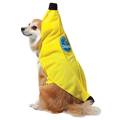 Your pup will be all smiles in this Chiquita Banana Costume.