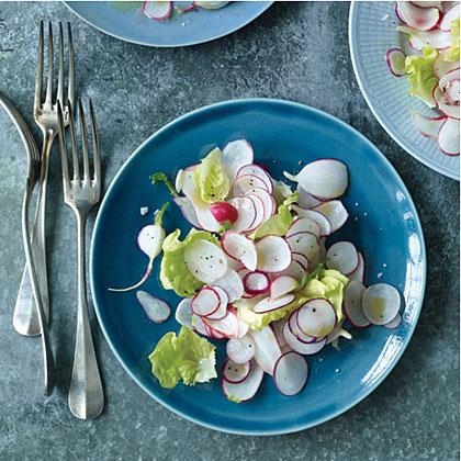 Boston Lettuce and Radish Salad