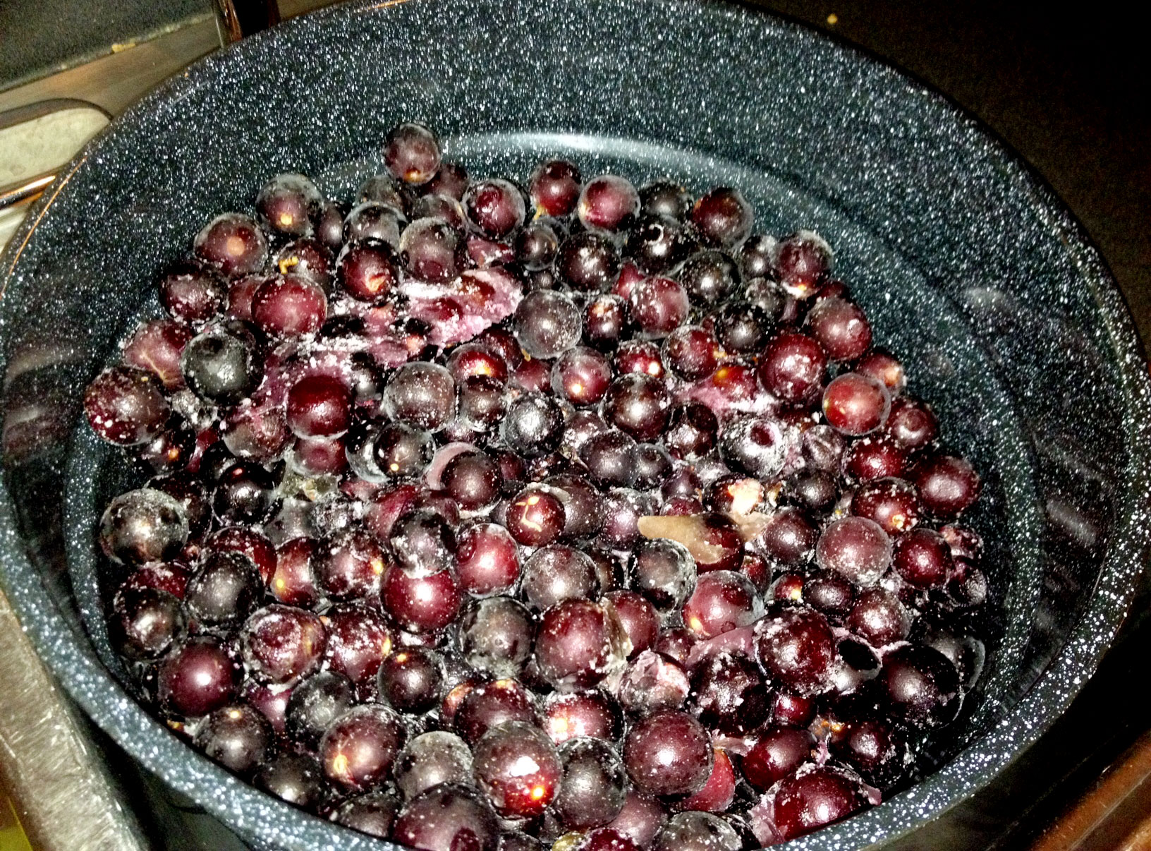 What to Do With Muscadines?