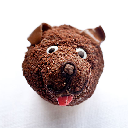Brown Dog Cupcakes