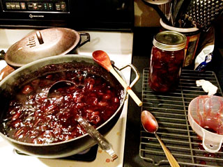 Muscadine Pie Filling