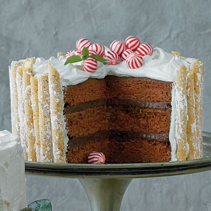 Cake of the Week: Peppermint-Hot Chocolate Cake